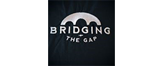 bridging-the-gap